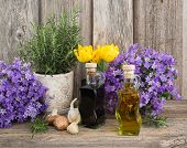 picture of vinegar  - Olive oil and vinegar in bottles on wooden table with garlic and rosemary in flowerpot - JPG