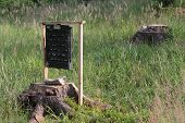 image of trap  - Pheromone trap for bark beetle in grass on meadow near forest  - JPG
