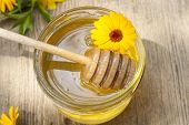 foto of linden-tree  - Linden honey in jar and calendula blossoms on wooden table - JPG