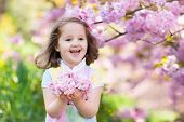 Little Girl With Cherry Blossom poster