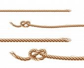 Set Of Realistic Brown Ropes, Jute Or Hemp Twisted Cords With Loops And Knots, Isolated On White Bac poster