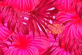Pink Red Exotic Pattern. Monstera Leaves And Hibiscus Flowers In Summer Print.  Saturated Large Flor poster
