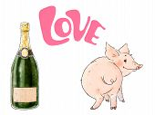 Hand Drawn Naughty Pig And Bottle Of Champagne. Cute Funny Piglet Isolated On White Background. Insc poster