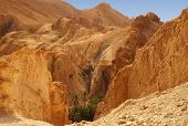 foto of tozeur  - Panoramic view of the Chebika oasis in the desert of Tunisia - JPG