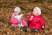image of leaf-blower  - Two little girls blowing bubbles in the park - JPG