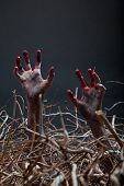 stock photo of undead  - Zombie stretching his creepy hands from the grave - JPG