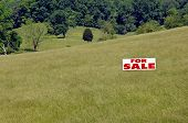 Acres for Sale