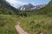 foto of colorado high country  - Path through a summer meadow at the Maroon Bells near Aspen Colorado - JPG