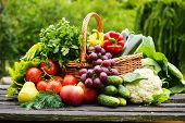 stock photo of zucchini  - Fresh organic vegetables in wicker basket in the garden - JPG