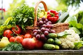 stock photo of tables  - Fresh organic vegetables in wicker basket in the garden - JPG