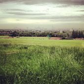 London skyline from Hampstead Heath