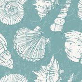 picture of cockle shell  - Seamless pattern with sea shells - JPG