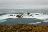 foto of mendocino  - Surf over reef at Mendocino Headlands State Park - JPG