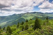 Blue Ridge Mountain Summer Landscape Scenic