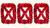 picture of x-rated  - Red dried rose petals in a box forming XXX - JPG