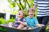 stock photo of wheelbarrow  - Two little boys having fun in a wheelbarrow pushing by father in summer garden - JPG