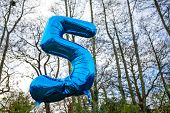 picture of helium  - Crinkly balloon helium for 5 year old in the woods - JPG