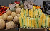 stock photo of maize  - Heap of maize ears at farmers market - JPG