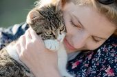 image of tabby-cat  - Blonde woman playing with her adorable cat - JPG