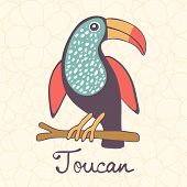 image of toucan  - Colorful exotic toucan bird illustration in vector format - JPG