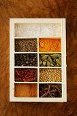 foto of bay leaf  - set of different spices  - JPG