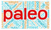 stock photo of fat-guts  - Paleo word cloud on a white background - JPG