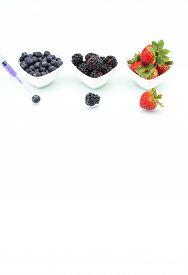 foto of modification  - Genetic Modification blueberry blackberry strawberry fruit modification gene needle - JPG