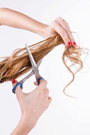 stock photo of split ends  - Girl Cuts  Her Split Ends Of Hair - JPG