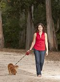 picture of dog park  - This photo shows a girl taking a walk on the park with is dog - JPG