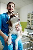 Vet in uniform and his companion in veterinary clinic poster