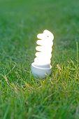 picture of light-bulb  - energy saving bulb on grass - JPG