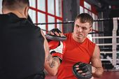 Close Quarter Boxing. Strong Tattooed Athlete In Sports Clothing Training On Boxing Paws With Partne poster