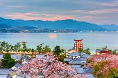 Miyajima Island, Hiroshima, Japan with temples on the Seto Inland Sea at dusk in the spring season. poster