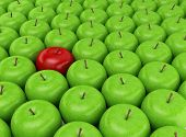 stock photo of peculiar  - One red apple selected on the background of green apples - JPG