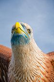 stock photo of langkawi  - Eagle statue - JPG