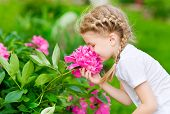 stock photo of lilac bush  - Beautiful blond little girl with long hair smelling flower - JPG