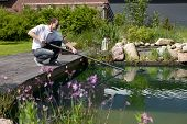 foto of sun perch  - man cleanse his garden pond with a landing net perches on a terraced wood stones and bushes in background - JPG