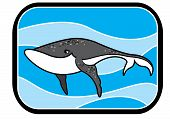 pic of animated cartoon  - Illustration of a cartoon animated blue whale in blue ocean - JPG