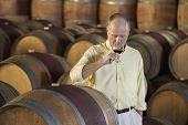 Middle aged man tasting red wine surrounded by barrel in cellar
