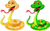 pic of jungle snake  - Vector illustration of Cute snake cartoon  isolated on white background - JPG