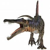 image of lizard skin  - 3D digital render of an aggressive Cretaceous dinosaur Spinosaurus or spiny lizard isolated on white background - JPG