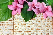 image of hebrew  - spring holiday of Passover and its attributes - JPG