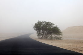 stock photo of sandstorms  - Sandstorm in the desert of Qatar Middle East