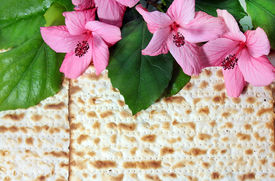 image of piety  - spring holiday of Passover and its attributes - JPG