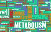 foto of enzyme  - Metabolism as a Medical Health Exercise Concept - JPG