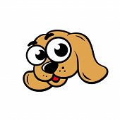 pic of popeye  - Cute muzzle small dog on white background - JPG