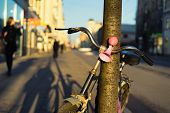 foto of tree lined street  - Bicycle with a pink signal in a tree on the street - JPG