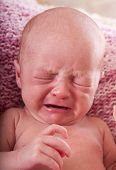 foto of newborn baby girl  - Newborn baby girl  crying - JPG