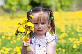 Little Girl On Dandelion Field