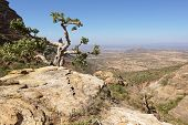 pic of ethiopia  - Landscape in Tigray province close to Adigrat - JPG